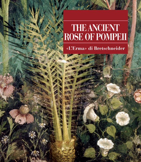 The Ancient Rose of Pompeii.